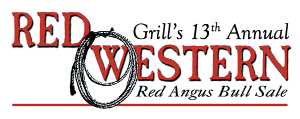 Grill's 13th Annual Red Western Red Angus Bull Sale